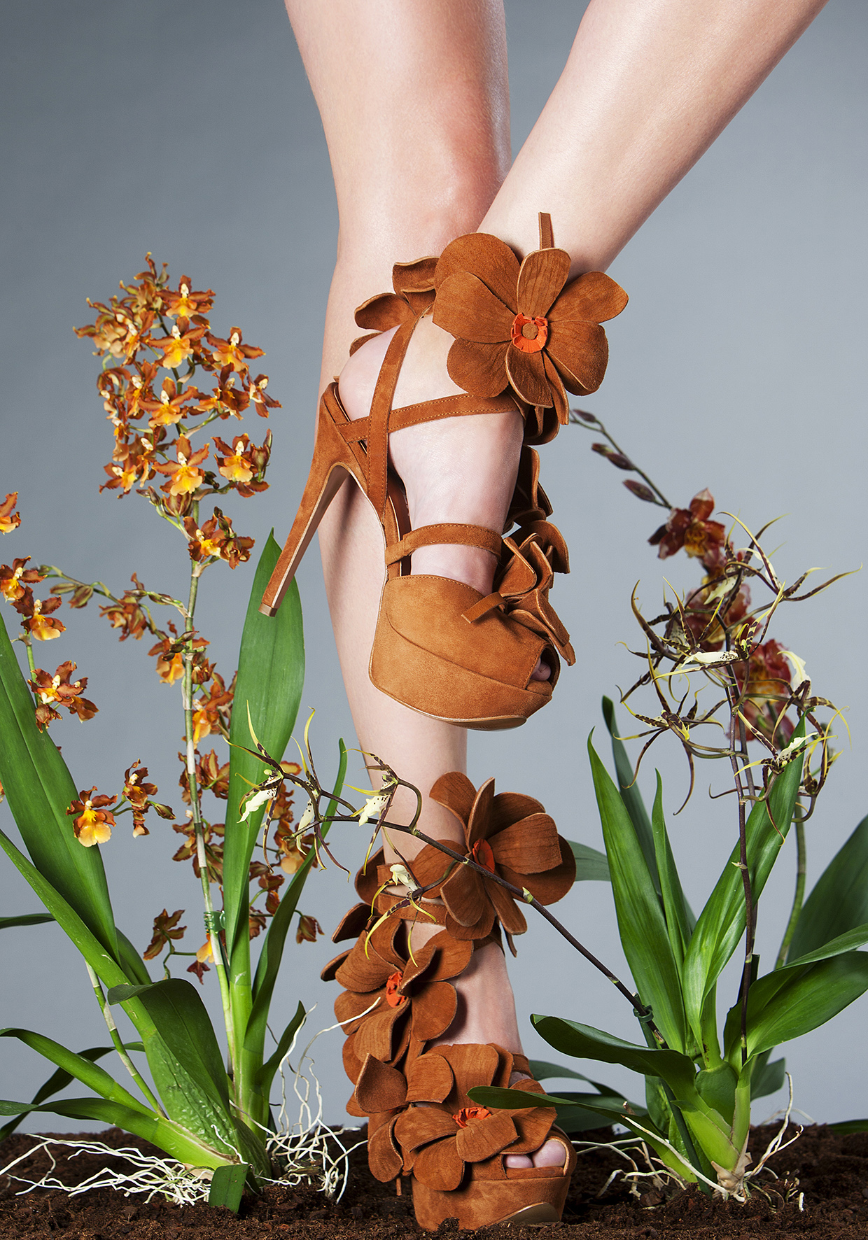 Orchid Shoe by Jan Jansen