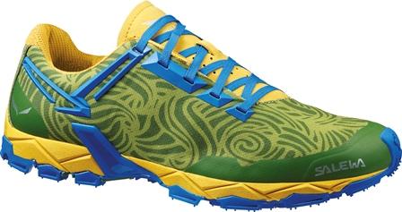 salewa shoe 2